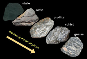 With compaction clay-rich mud becomes shale, then with increasing metamorphism changes to slate, phyllite, then schist, and eventually gneiss.