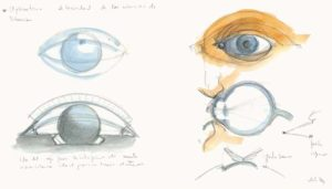 concept for City of Arts and Sciences, Valencia